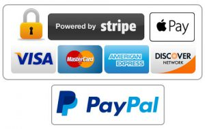 payment methods conceive plus